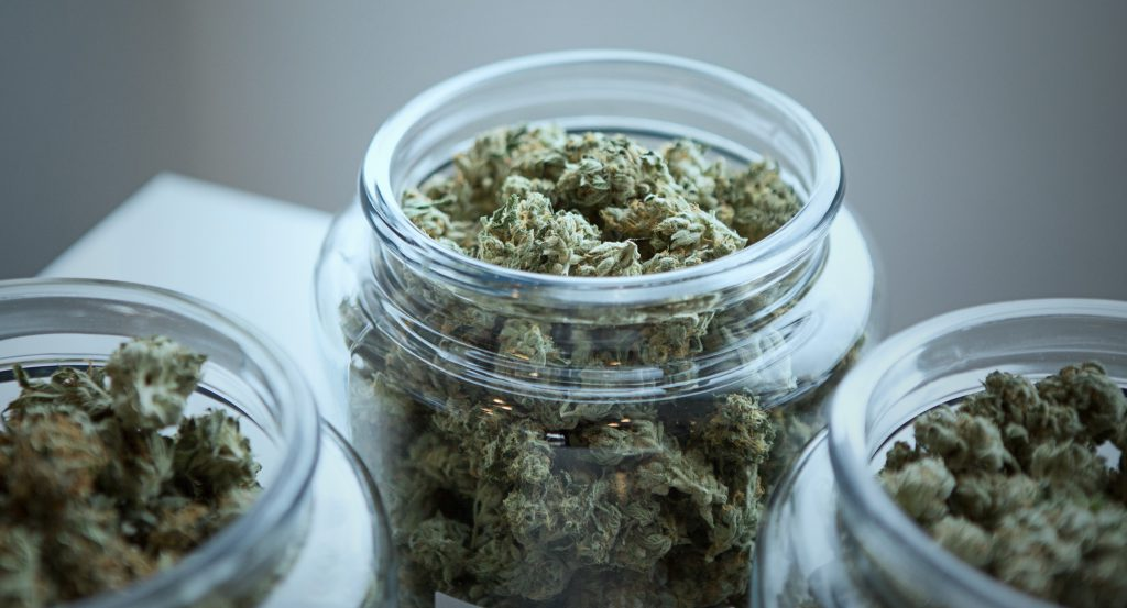 Cannabis Micro-Cultivation Insurance in Canada
